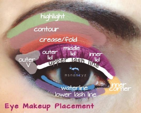 eye makeup placement:diagram of eye areas